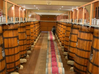 Chateau Puech-Haut - barrel-storage